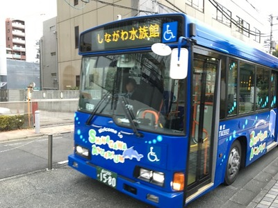 IMG_3891-1