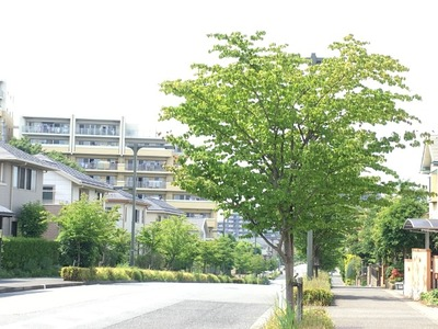 17/06/20ラーメン二郎めじろ台店 20