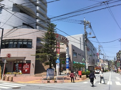 17/05/08杉田家 13