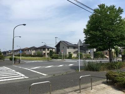 17/06/20ラーメン二郎めじろ台店 19