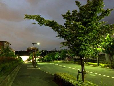 19/05/28中華蕎麦とみ田監修『豚ラーメン』 02