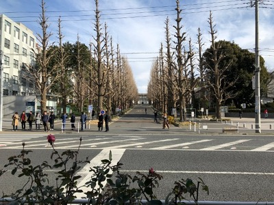 18/01/15とんかつ三田日吉店 鳥からあげ定食 10