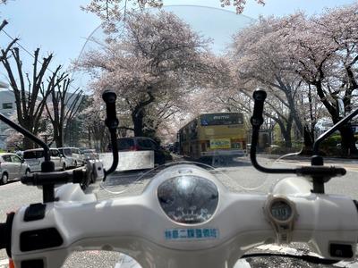 21/03/31ラーメン山岡家相模原店 01