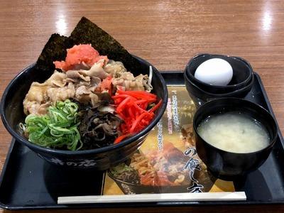 18/06/15伝説のすた丼屋アリオ橋本店 04