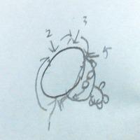 2014-07-12-22-17-09_deco