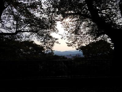 15/11/01アンロード(光陽商事)15