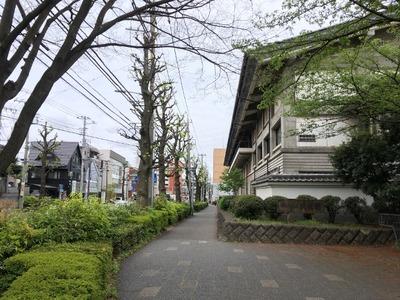 17/04/26横浜敦煌 担々麺 03
