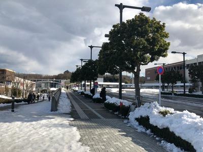 18/01/24HOKUO中山店 横浜ごまあんぱん 02