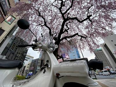 21/03/25伝説のすた丼屋八王子店 07