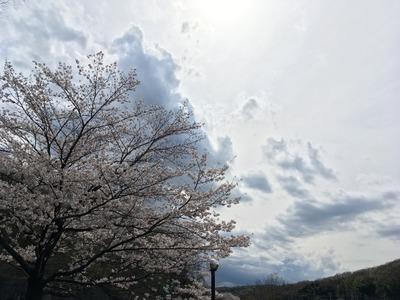 17/04/12め二郎 つけ麺11