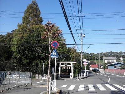 2012-10-25-13-29-55_photo