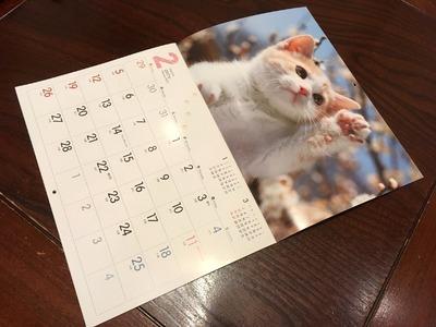 16/12/24タリーズコーヒーみなみ野店05