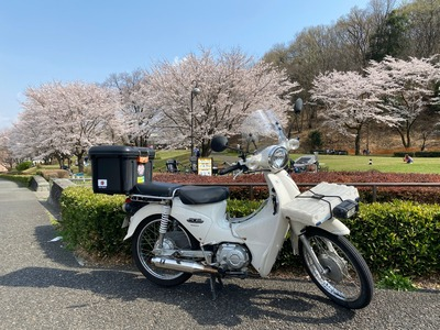 21/03/26もつ処 結(ゆう)ーyouー 14