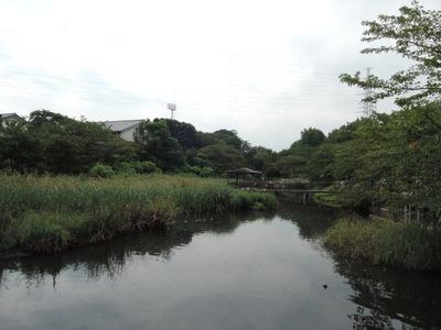 14/09/15横浜敦煌 坦々麺(5めちゃ)+半バター 1