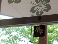 15/05/04自家製欧風カレー専門店がじゅまるの樹 03