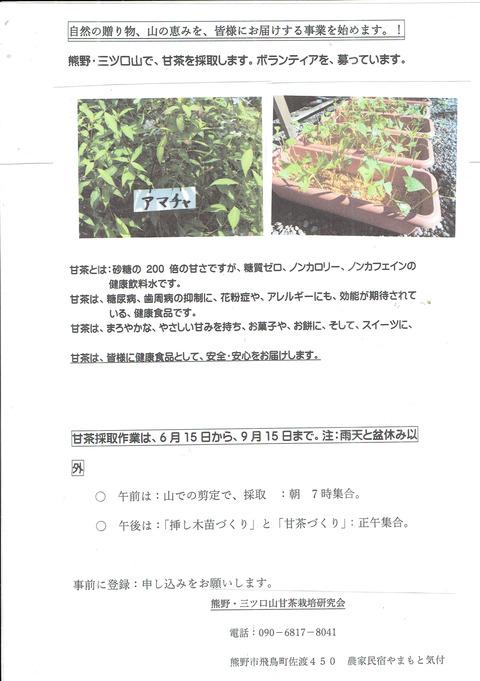 甘茶ボランティアチラシ20190509