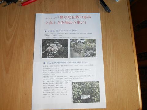 DSCN4095