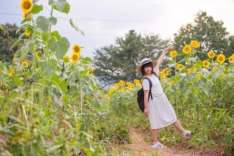 TSU18_setakeyoritakaiihmawari_TP_V1