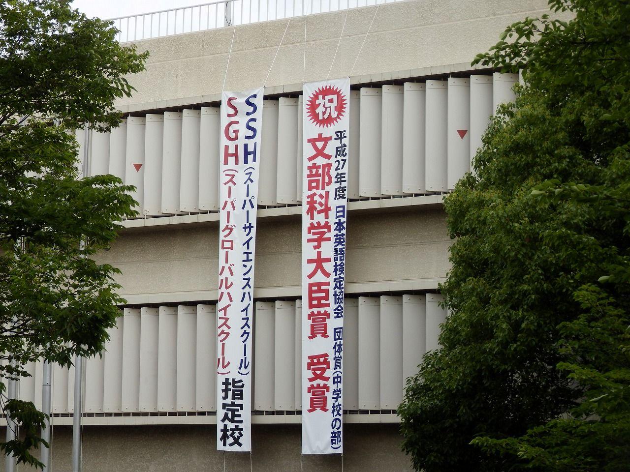 大学 薬科 大阪 医科