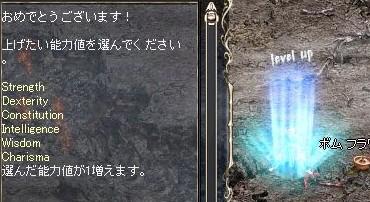 Lin2008031501.jpg