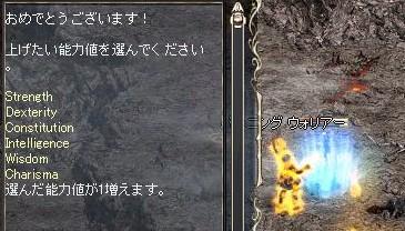 Lin2008020301.jpg