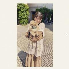 浜辺美波、愛犬との2ショットにファン大興奮「可愛いが渋滞してる」