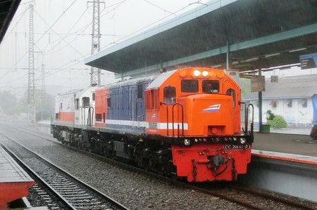 Cimg3555