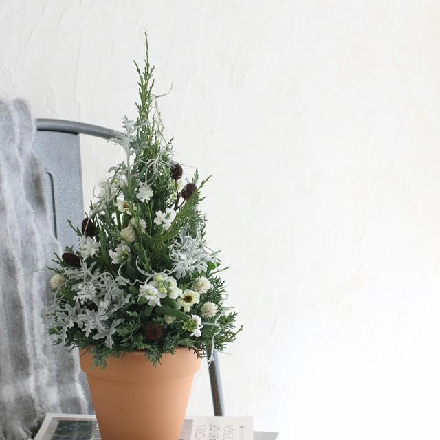 花代0円!今からでも♪クリスマスツリーを庭花アレンジでつくりませんか?