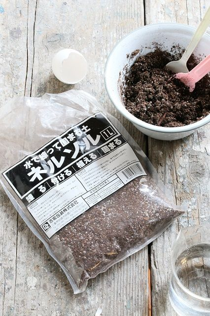 タマカラ多肉を手作り