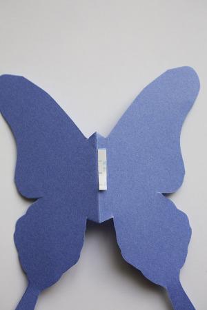 MUJIのフレームで、なんちゃって蝶の標本