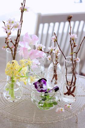 気負わず、伸びやかに。春の枝を飾ろう