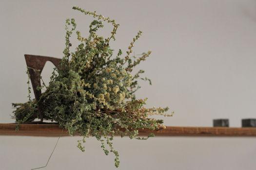 「鉄と錆と枯れ草たち」展レポート