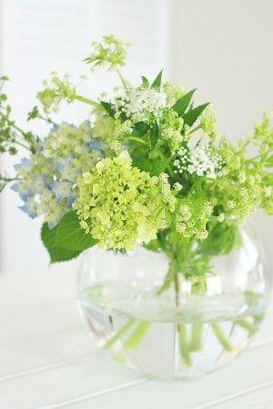 捨ててしまうには忍びなく、 少し色づいたアジサイと 白い花のシモツケと一緒に アレンジしてみました。 野菜の花、華やかさは無いけれど、 爽やかなアレンジになりました。
