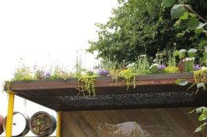 屋根の上にも植栽が。 日本の住宅でも施工されている 「草屋根」のようですね。 ワイルドな感じが、また素敵~。