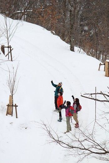 2月半ばの東北の里山は雪に深々と覆われているため、 足元を気遣いながら特にゆっくりゆっくりと。