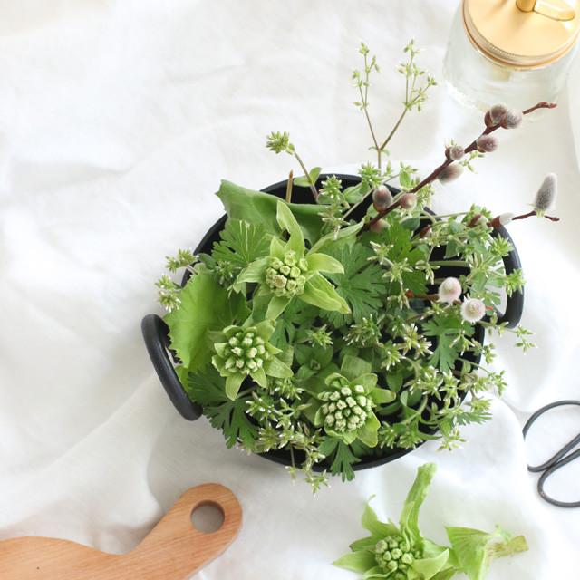 [カジュアルフラワー] 鉄鍋を使ってふきのとうをアレンジ 雑草と呼ばれる草花で