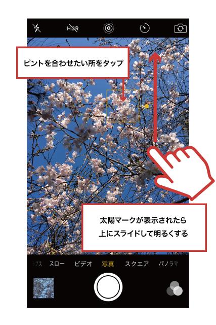 42ktoyohara_20160331_005
