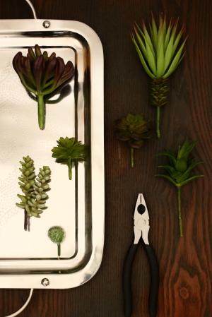 インテリアグリーンにフェイク多肉植物