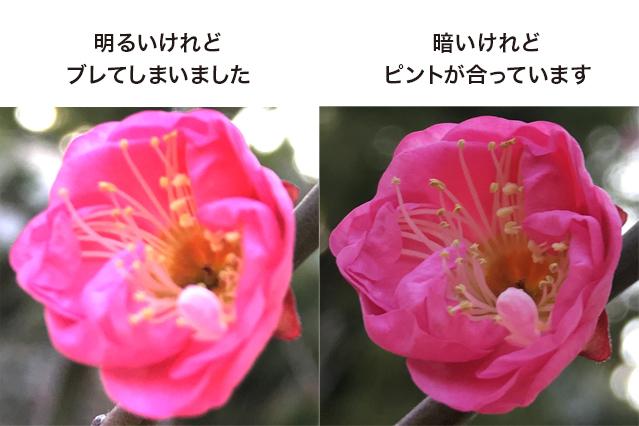 42ktoyohara_20160221_006