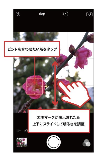 42ktoyohara_20160221_004