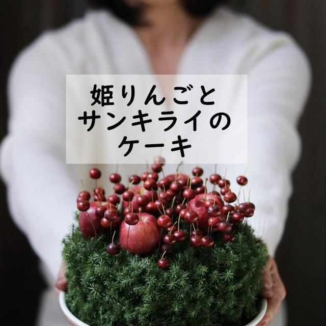 ★クリスマスまで長く楽しめる! 姫りんごとサンキライのケーキアレンジメント