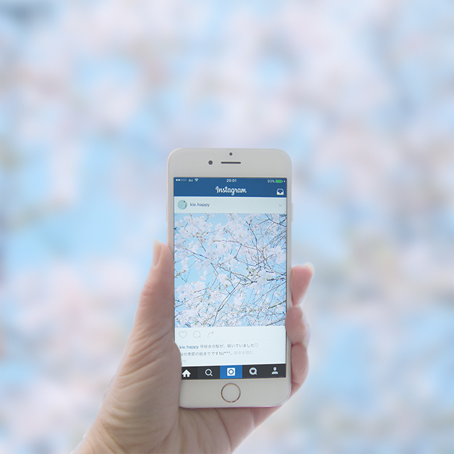 iPhoneカメラで、桜を撮ろう! 桜のゆるかわ写真を撮る方法