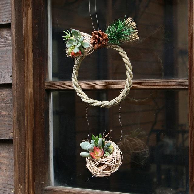 多肉植物でお正月リース?? 100均のしめ縄とラタンボールを使ったアレンジ