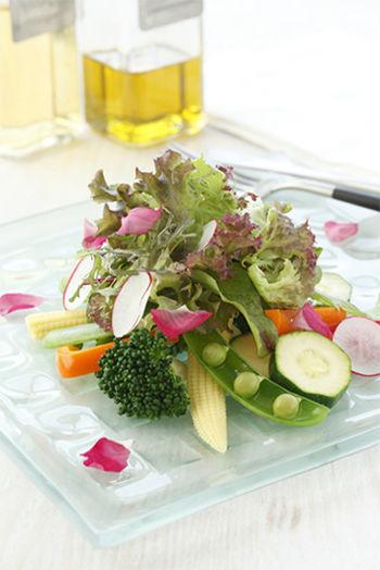 カラフル菜園サラダ