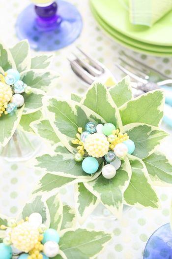 葉っぱが主役!緑を楽しむテーブルアレンジ