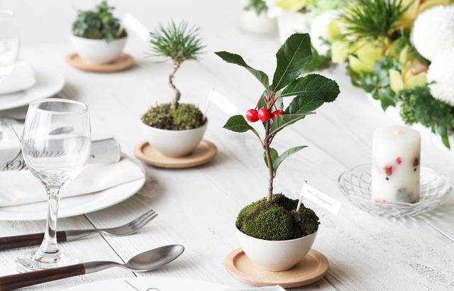 結婚式 席次表 盆栽 花嫁DIY 作り方