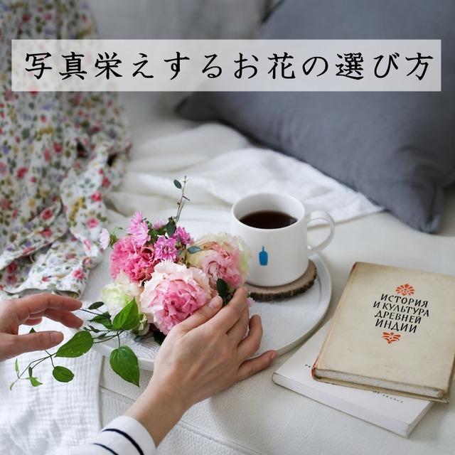 【素敵な写真のヒント】写真栄えするお花の選び方