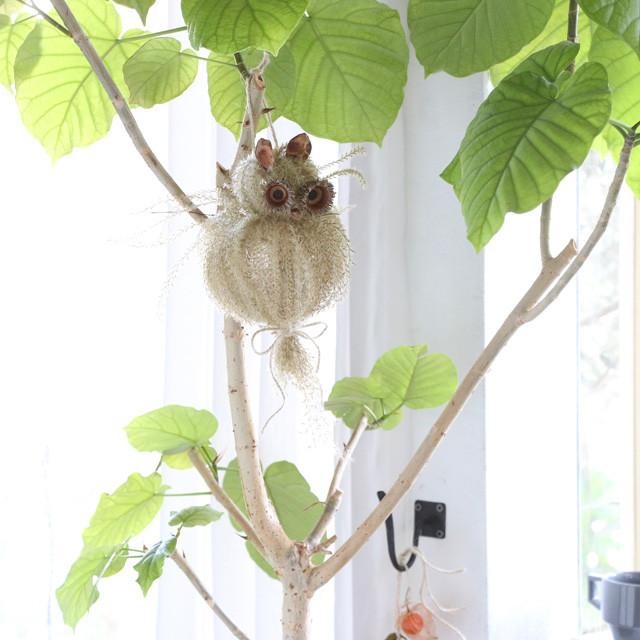 自然と遊ぶ♪ ススキで作る 縁起物フクロウ(ミミズク)の作り方