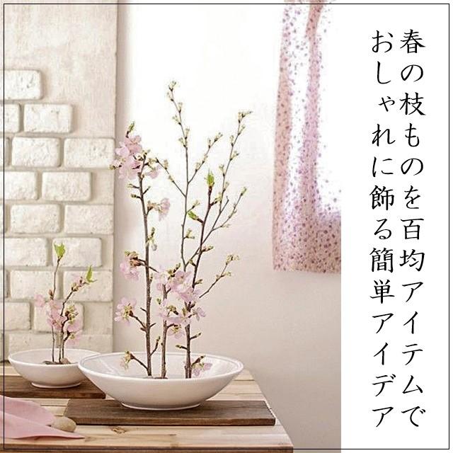 春の枝物を100均アイテムでセンス良く飾る簡単アイデア