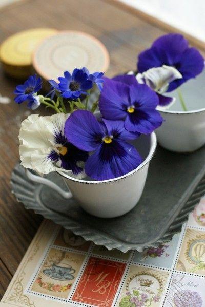 お花はときどき、水につかっていた茎の先端部分を カットしてあげると、長持ちします。 お庭にあるパンジーなどを摘んで使ってもいいですね。